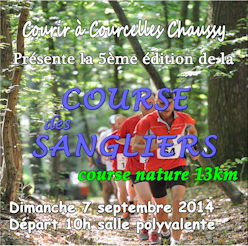 affiche_sangliers2014