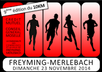 affiche_freyming2014