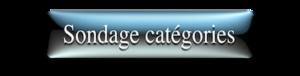 Sondage catégories 2019/2020